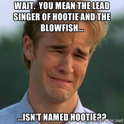 This image has an empty alt attribute; its file name is hootie.jpg
